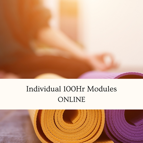 Individual 100hr Modules - Online