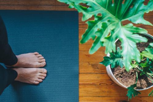 50Hr Mental Health Informed Yin Yoga