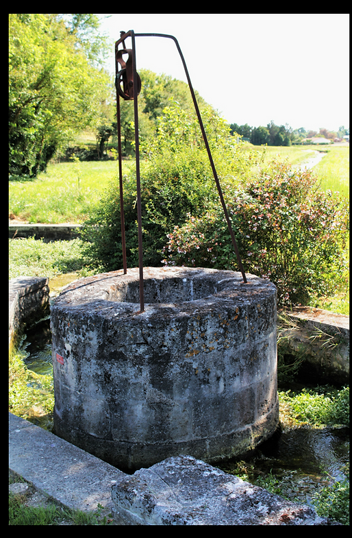 The WeLL (2).png