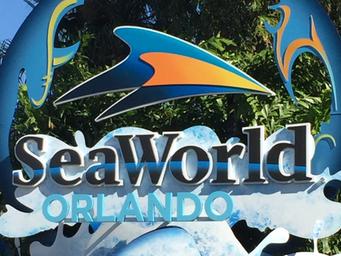 Relatos: Viagem Disney 2013 - Dia 4: SEAWORLD