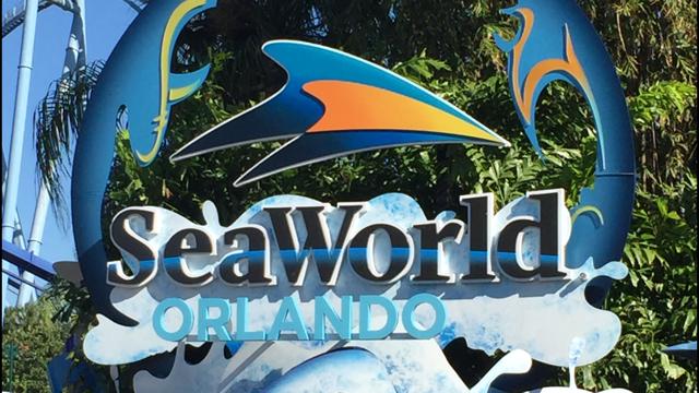 Relatos | Viagem Disney 2013 - Dia 4: SEAWORLD