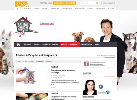 Lisez les billets de Karine sur Animal cherche compagnie de CasaTV