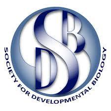 sdb.jpg