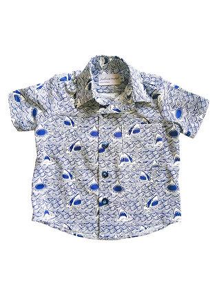 Boy Collared Shirt, Sharks