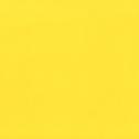 jaune_edited_edited.png