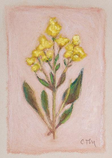 Floret No.II   [5x7]
