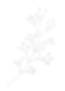 clover-logo-17thavenue.png