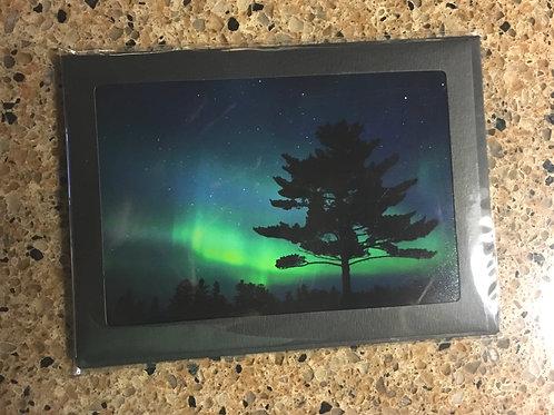 White Pine Aurora 5x7