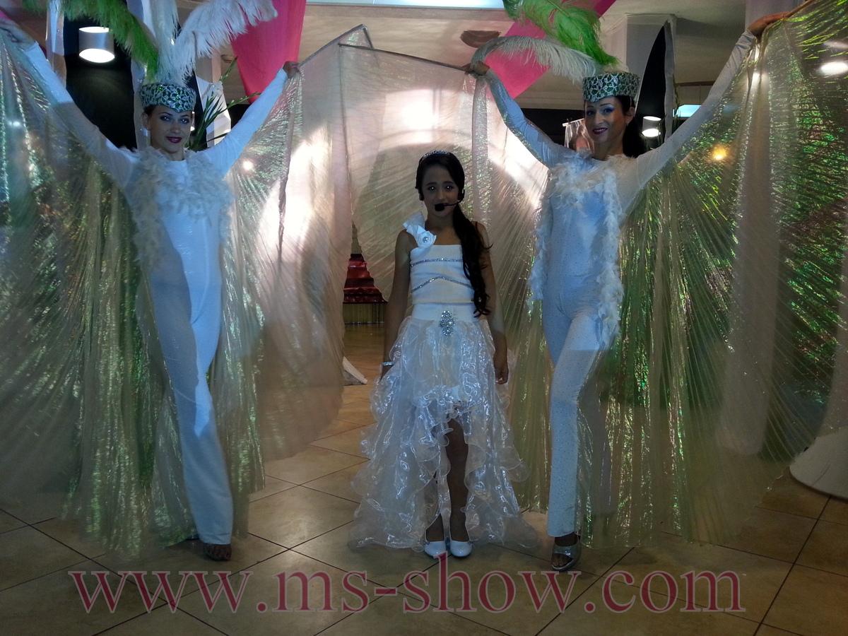 Бабочки вход в зал бат мицва