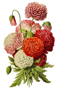 flowerscutout.png