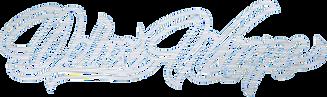 DeluxWraps logo