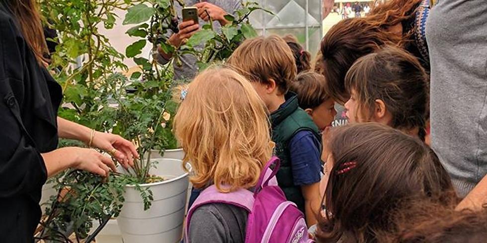 פעילות ילדים - הפירה התחפש לצמח