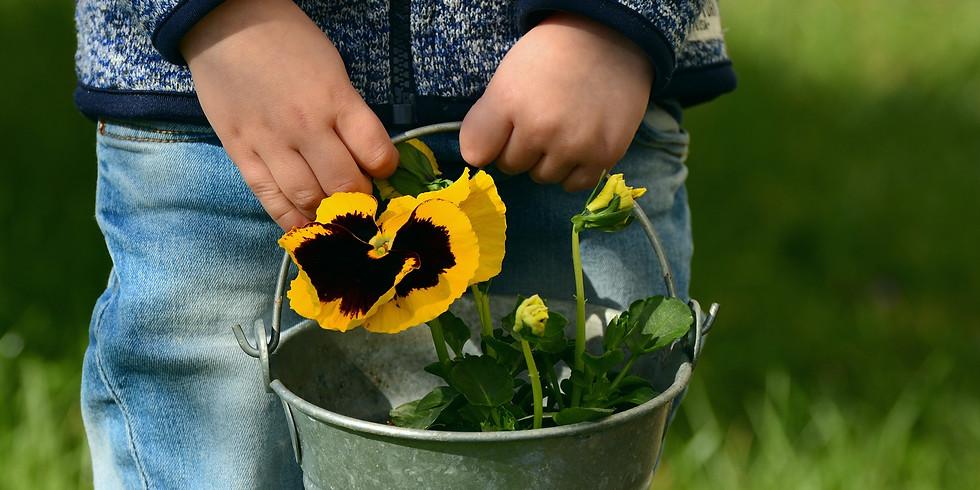 פעילות ילדים - הכנת עציץ וזריעה