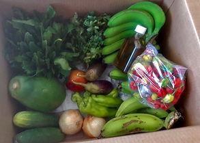 Productos_agrícolas_Cosecha_Trujillana_