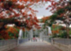 Puente_Histórico_(3).jpg