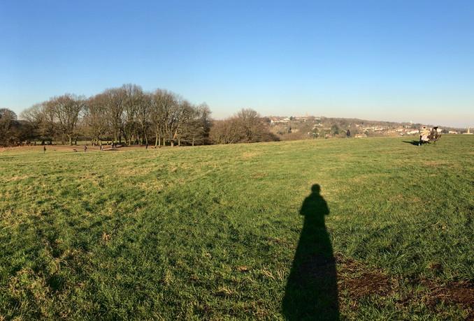 Shadows of Hampstead Heath