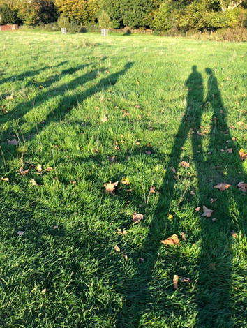Shadows of Richmond