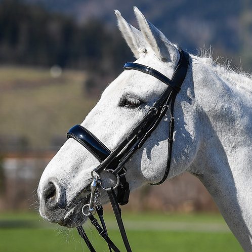 Vespuccci Double Bridle Patent Leather with reins 9001