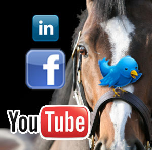 The Amazing Effect of Social Media On Horse Businesses