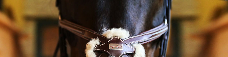 selleria_equipe_header-testiere-cavallo-