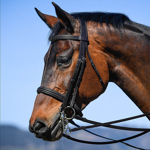 Vespucci Double Bridle with reins