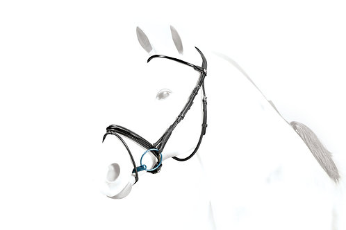 Flash Bridle Patent Rolled BR40