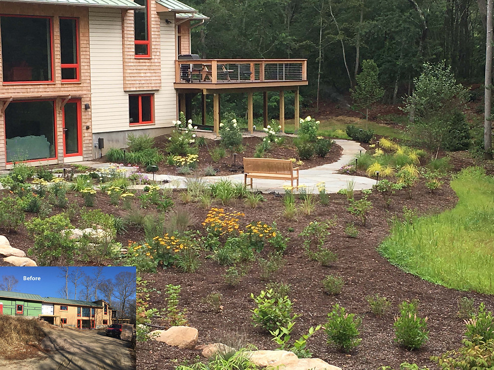 Native plantings surround a bluestone patio
