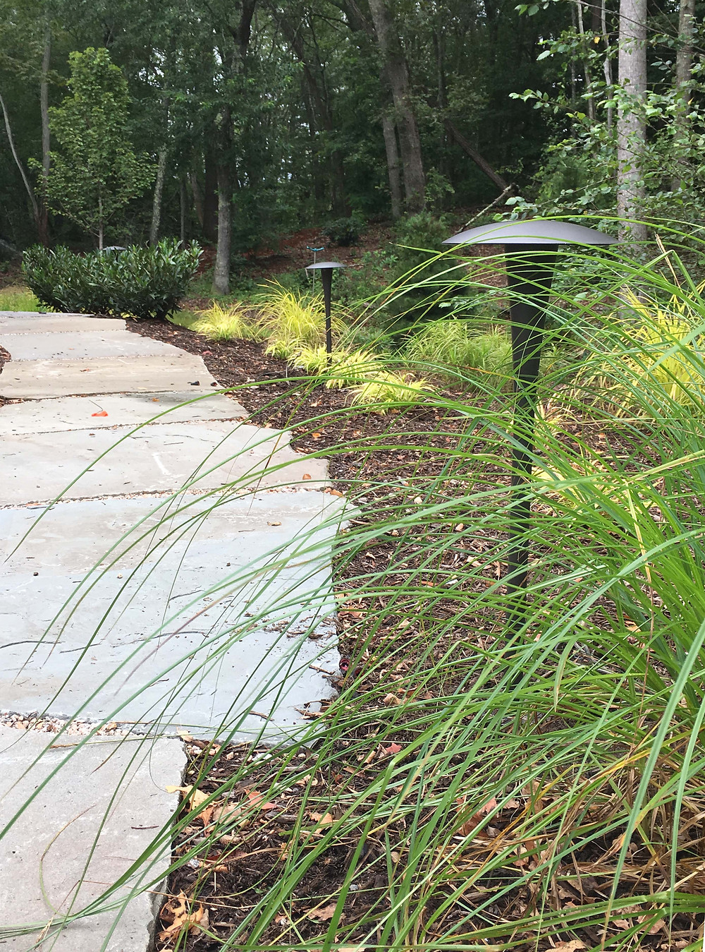 rugged landscape materials and native plants