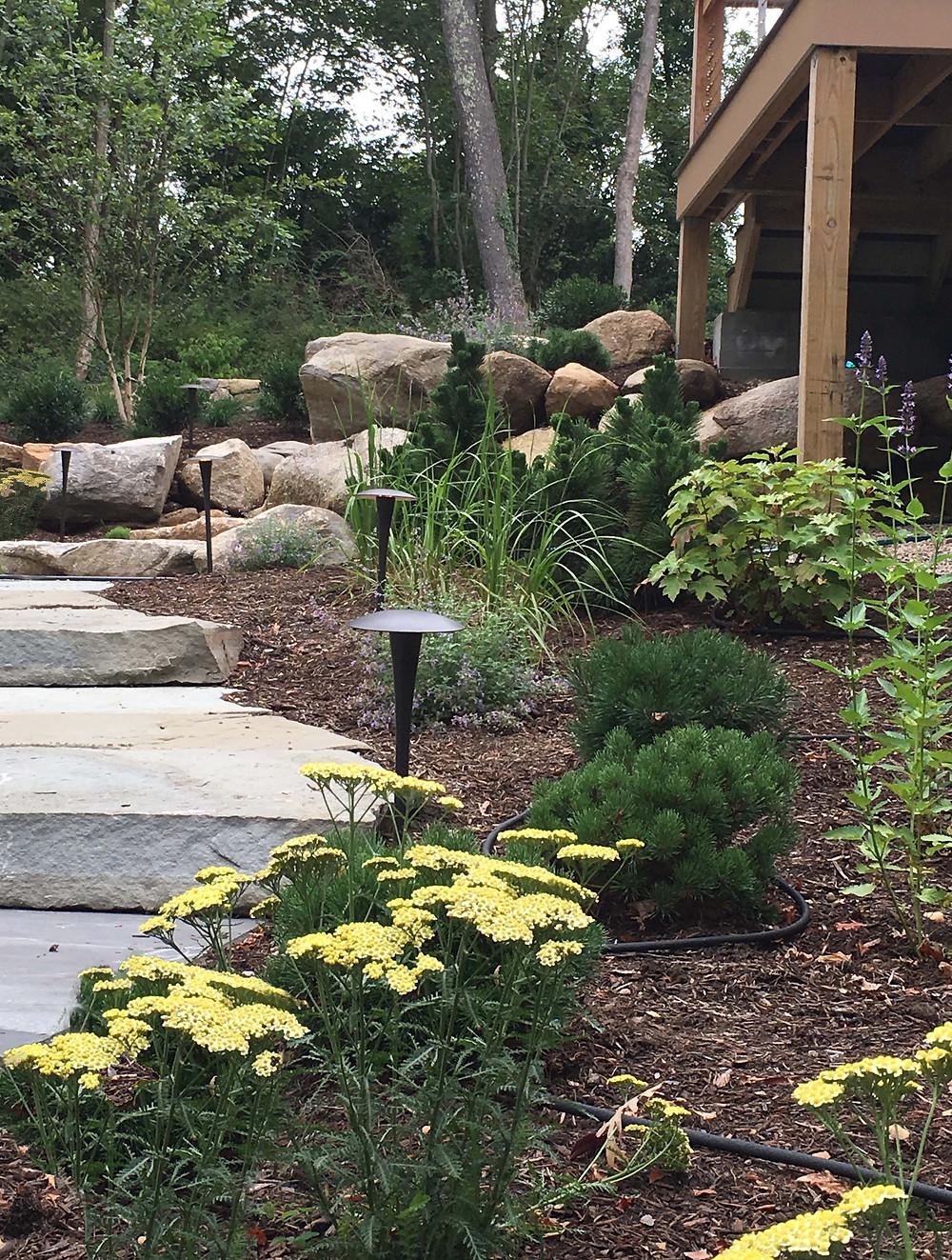 Bluestone and boulder pathway through the garden