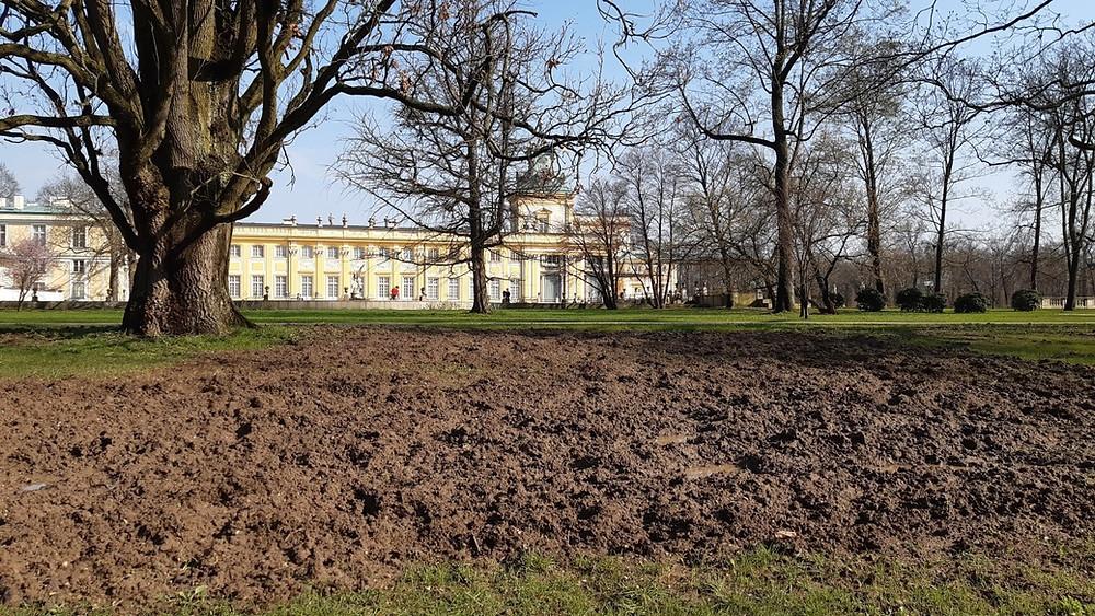 Źródło: Facebook Muzeum Pałacu Króla Jana III w Wilanowie