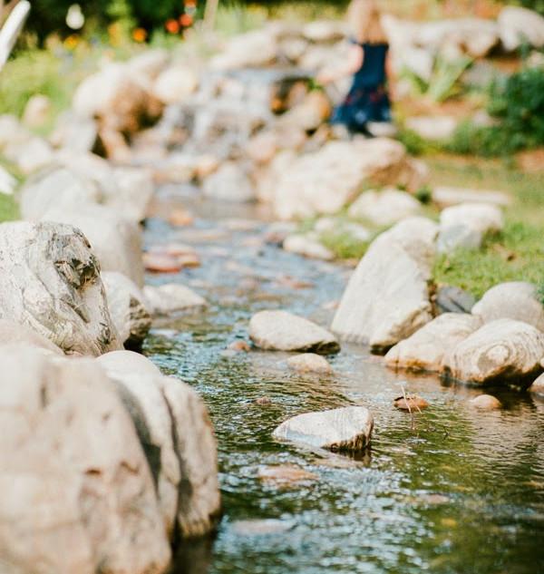 Creek in Ceremony Garden