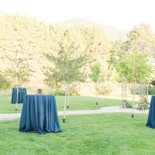 Outdoor Reception at the Barn