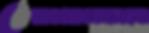 ESI logo horizontal full color.png