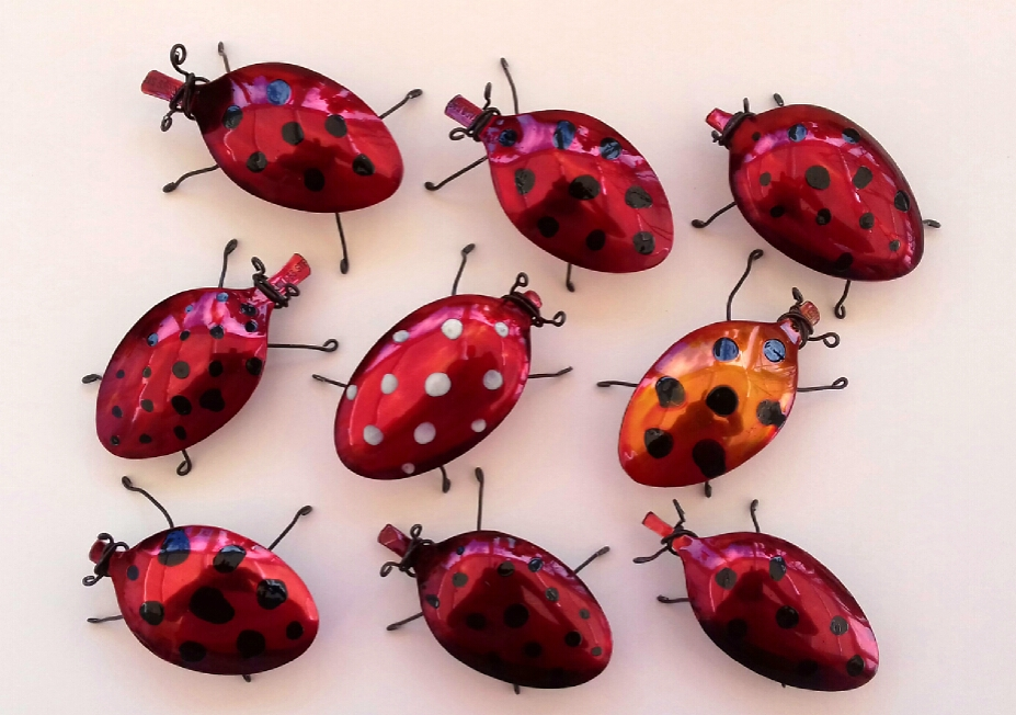 ladybirds -SpoonBugs