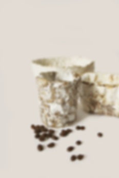 mycelium products food packaging bihome