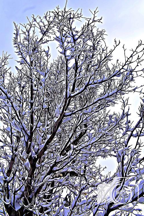 Winter Snow March 2020