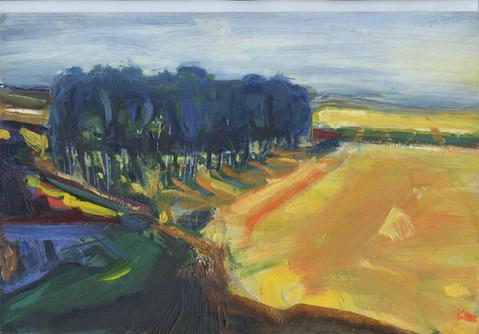 »Landschaft Schleswig Holstein«