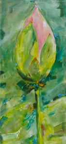 »Lotus 3«