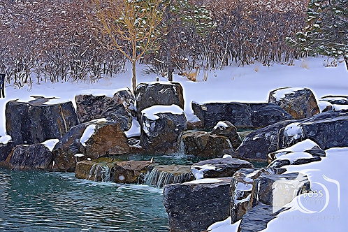 Park WaterFall Winter