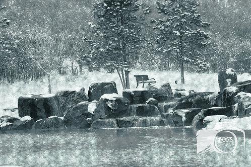 Park WaterFall Winter
