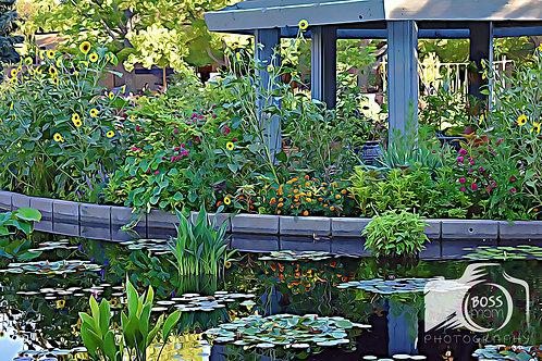 Botanic Garden Beauty