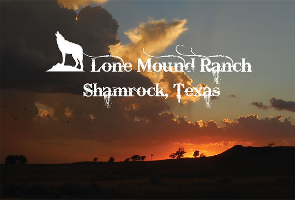 Pic for Webpage just ranch title.jpg