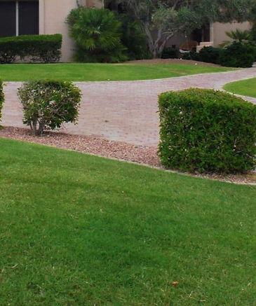 Turf Fertilization, Grass Fertilization, liquid fertilizer, fertilization programs, spray services