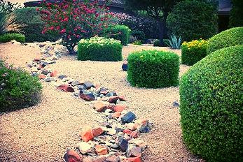 Arizona Weed King, Weed Control Phoenix, Weed Control Scottsdale, Weed Control Arizona, Weed Control Tempe, Weed Control Chandler, Weed Control Queen Creek, Weed Control A