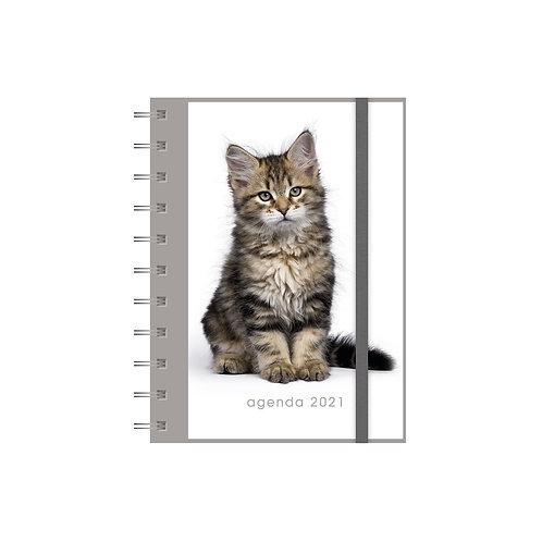 Agenda Spiraal A6 Katten 2021