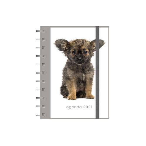 Agenda Spiraal A6 Honden 2021