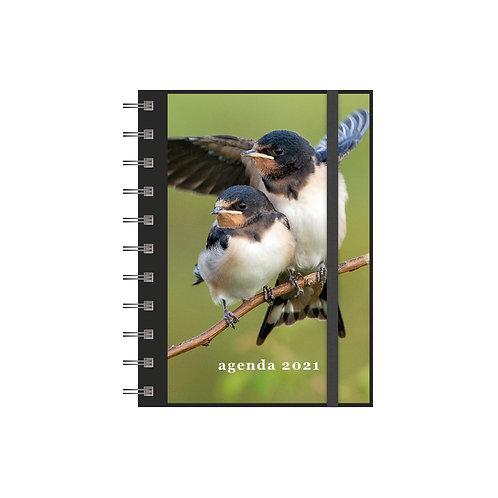 Agenda Spiraal A6 Vogels 2021