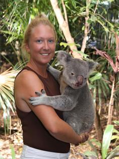 Koala Cuddles