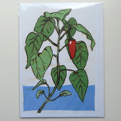 Red Chilli Plant card