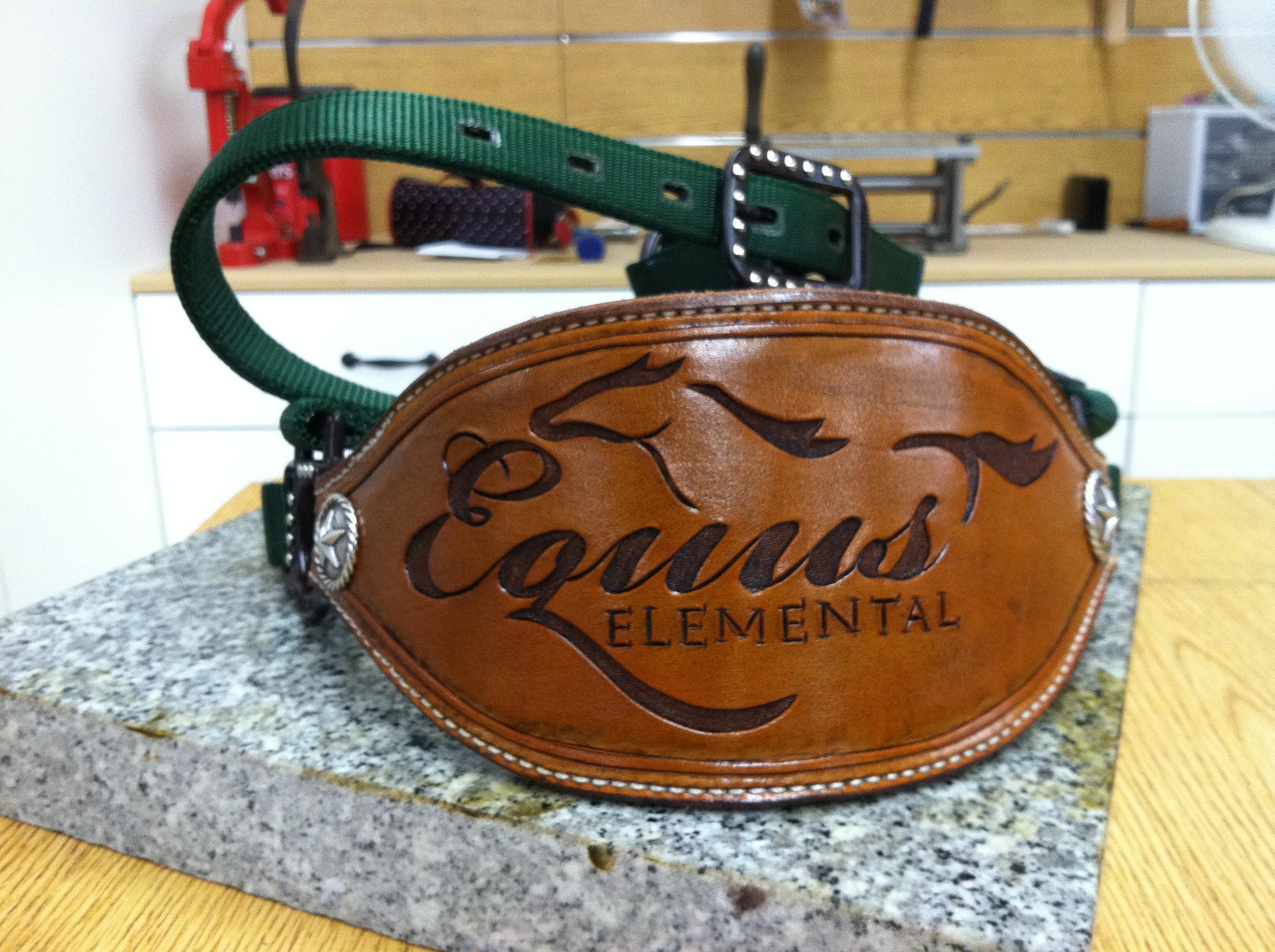 Custom Halter for Equus Elemental